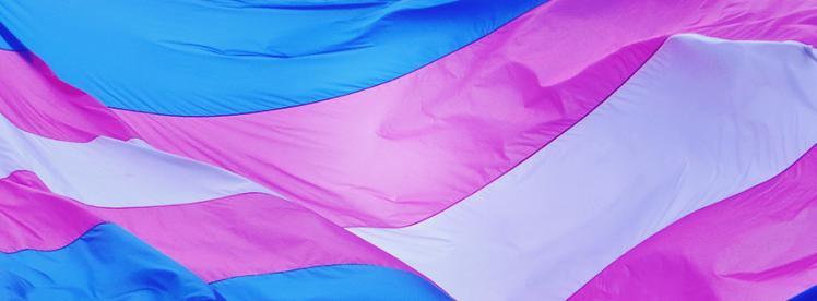 International Day Against Homophobia, Transphobia & Biphobia
