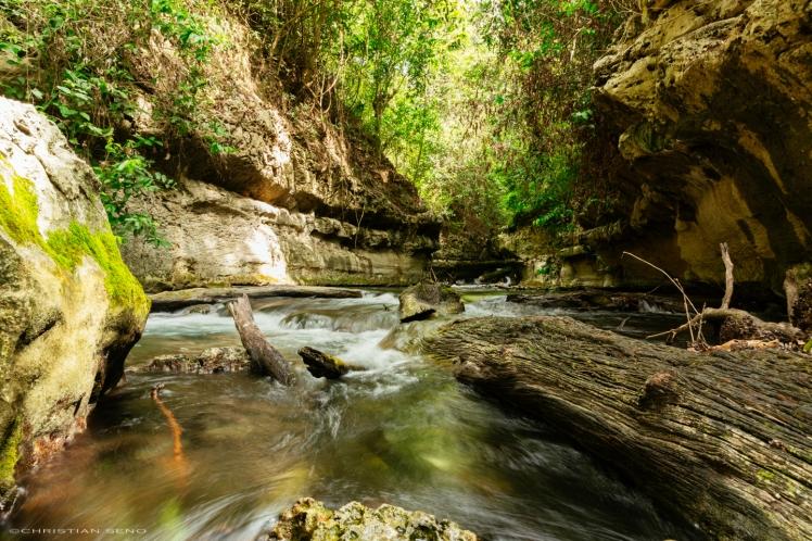 A Silent Spring, Boca del Cerro